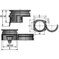 Multi-GFP(2)